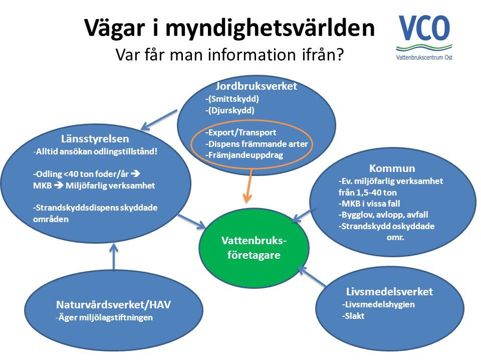 Vägar i myndighetsvärlden Var får man information ifrån