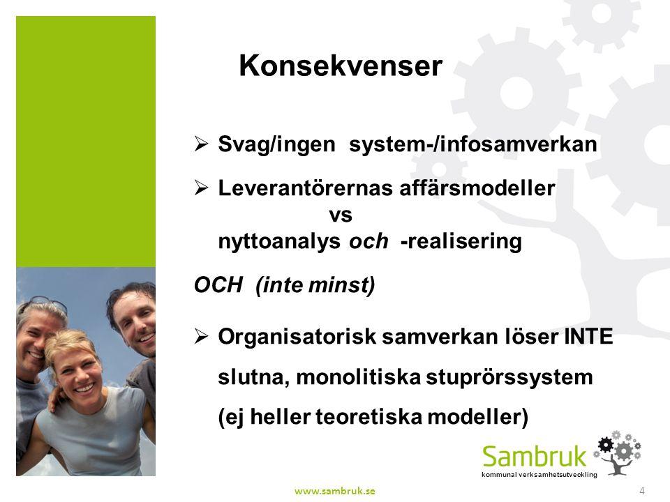 Konsekvenser Svag/ingen system-/infosamverkan