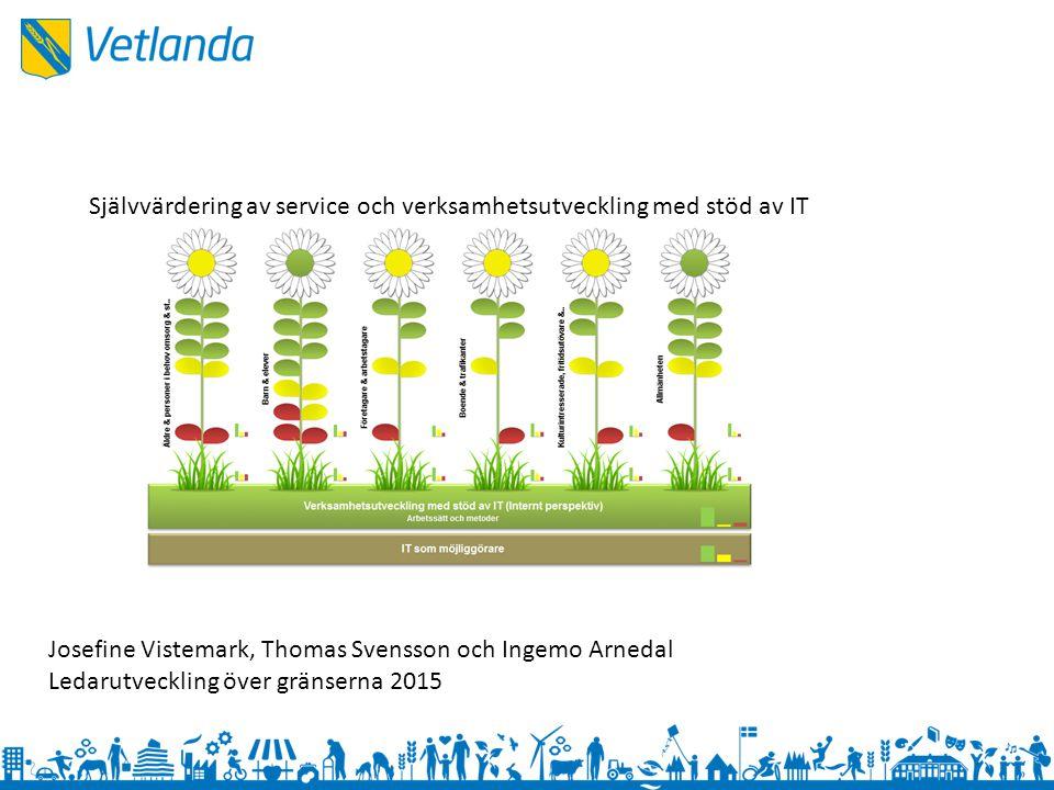 Självvärdering av service och verksamhetsutveckling med stöd av IT