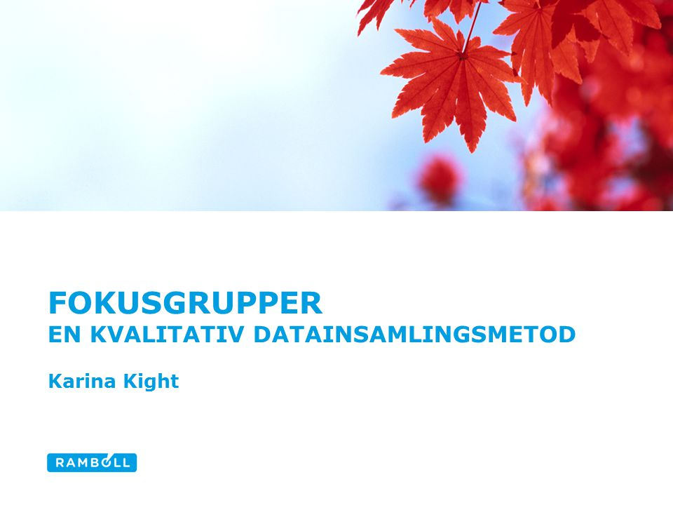 fokusgrupper En Kvalitativ datainsamlingsmetod Karina Kight