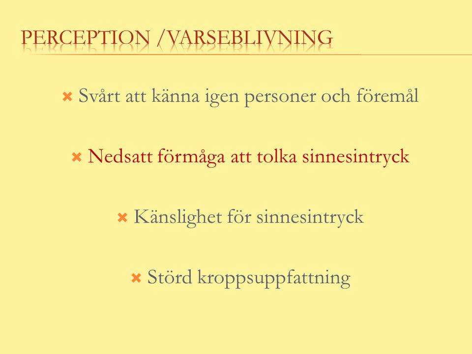 Perception /varseblivning