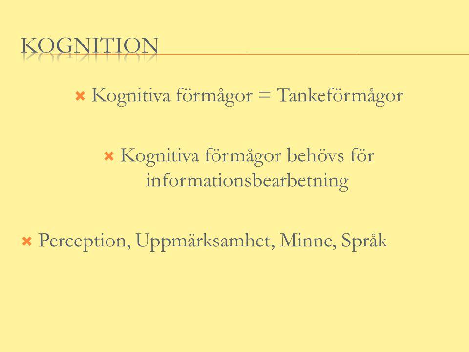 Kognition Kognitiva förmågor = Tankeförmågor