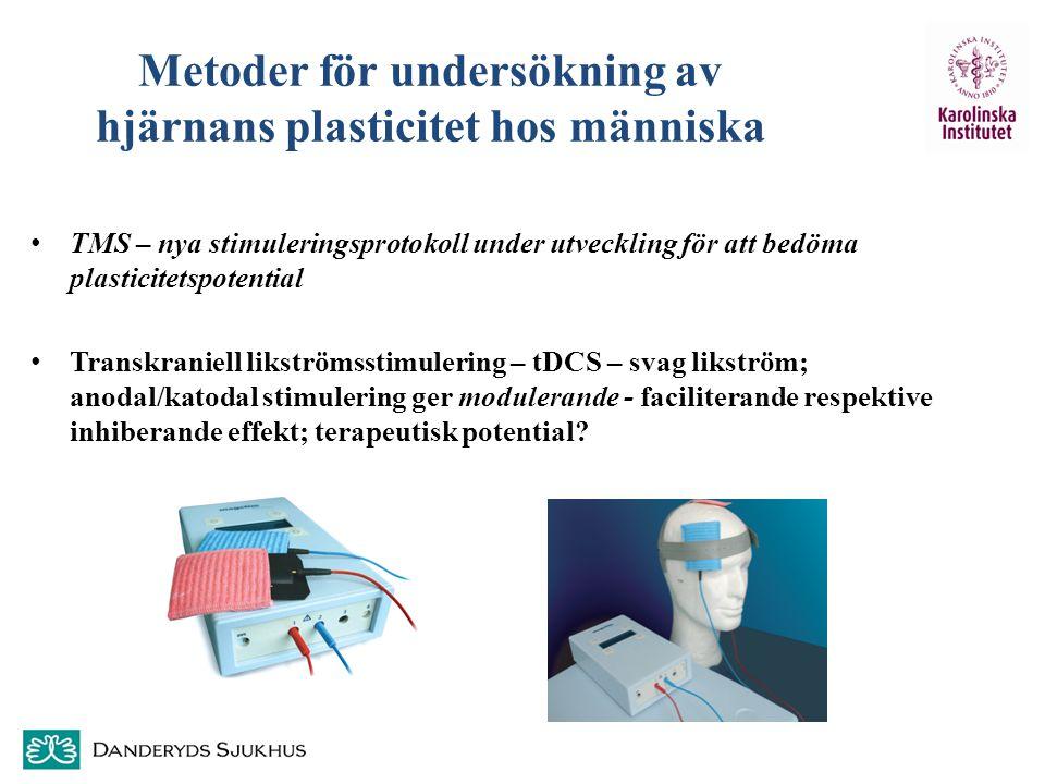 Metoder för undersökning av hjärnans plasticitet hos människa