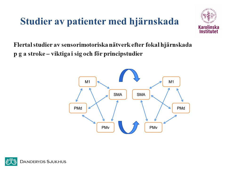 Studier av patienter med hjärnskada