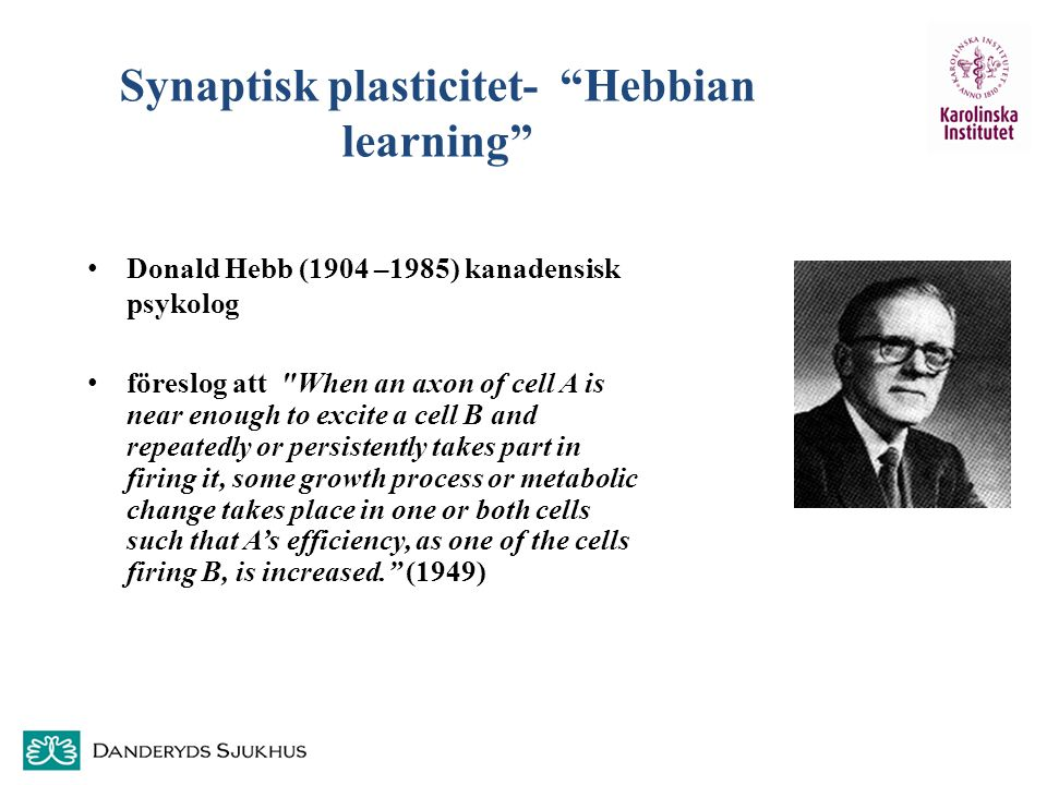 Synaptisk plasticitet- Hebbian learning