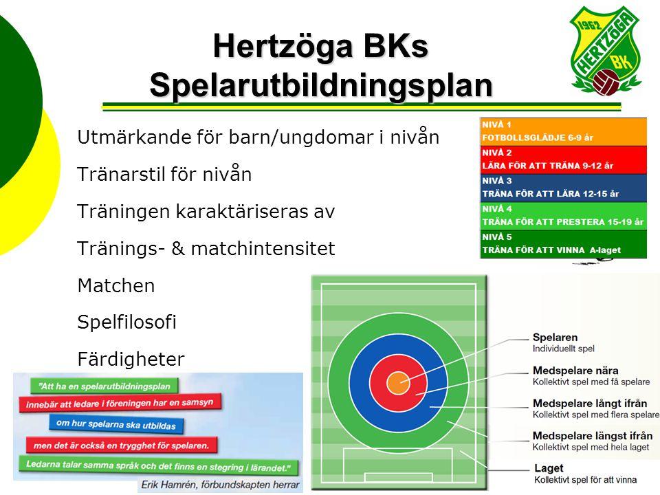 Hertzöga BKs Spelarutbildningsplan