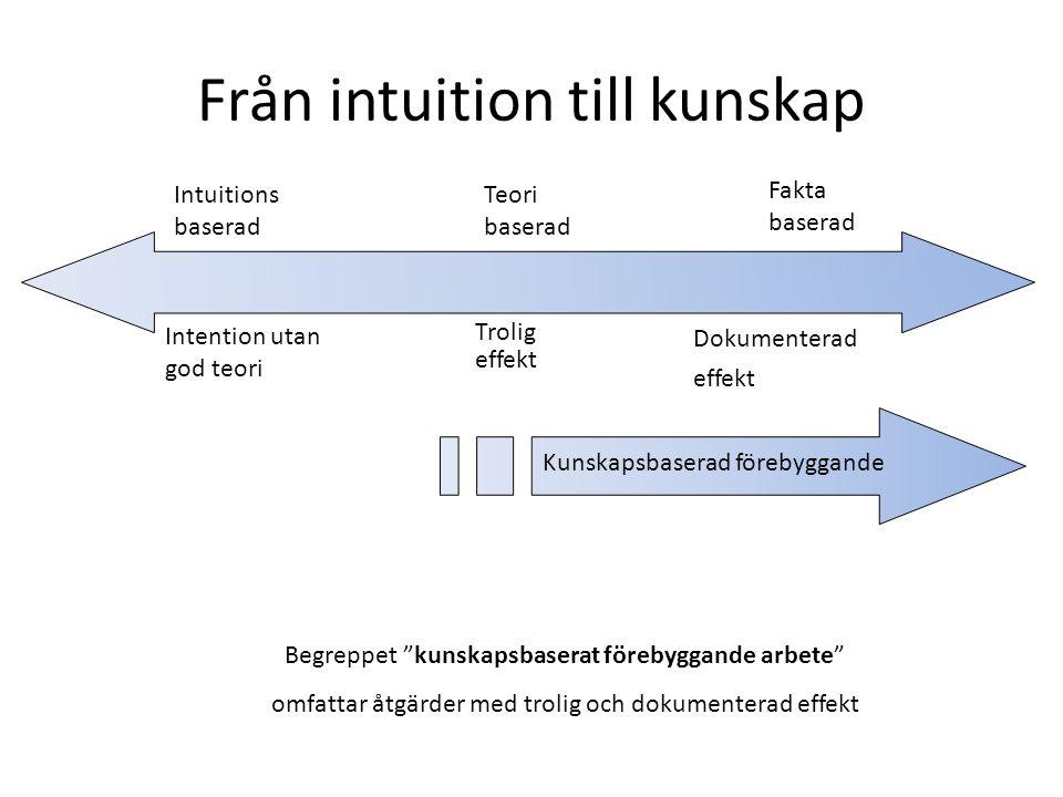 Från intuition till kunskap
