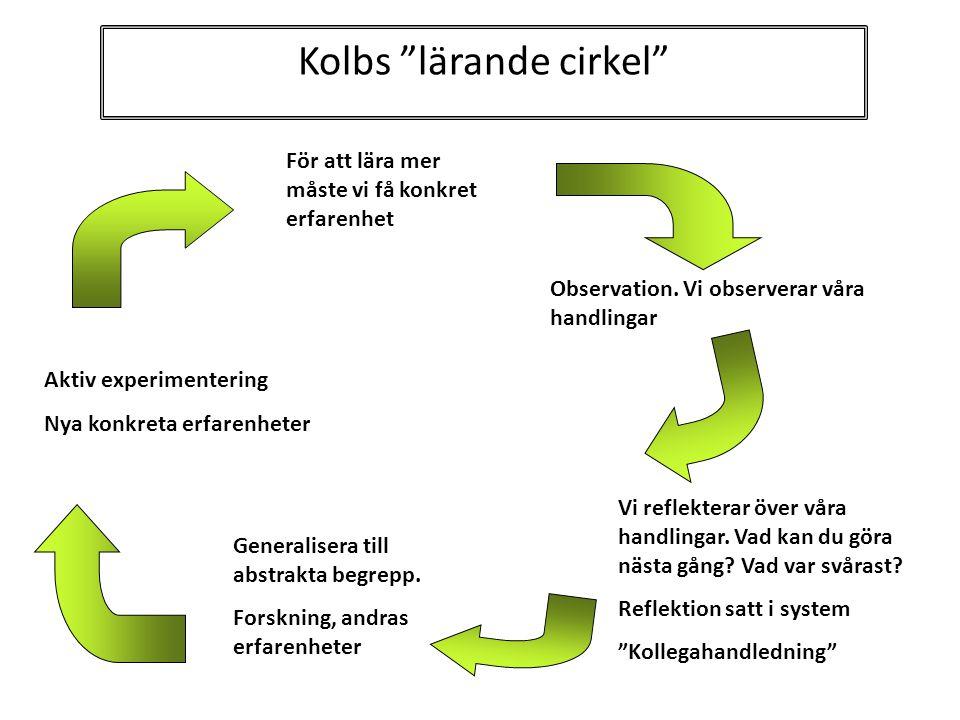 Kolbs lärande cirkel