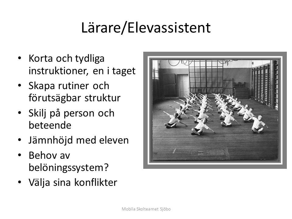 Lärare/Elevassistent