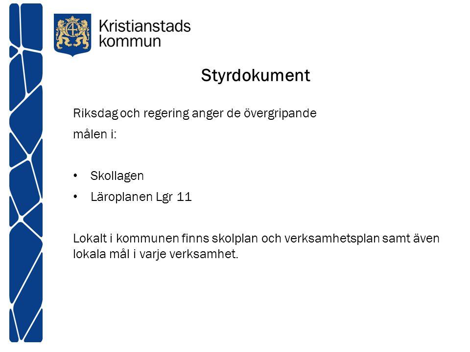 Styrdokument Riksdag och regering anger de övergripande målen i: