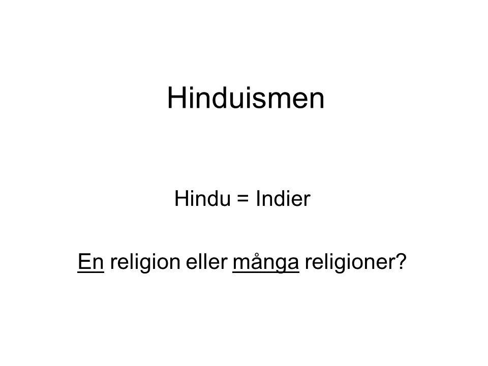 Hindu = Indier En religion eller många religioner