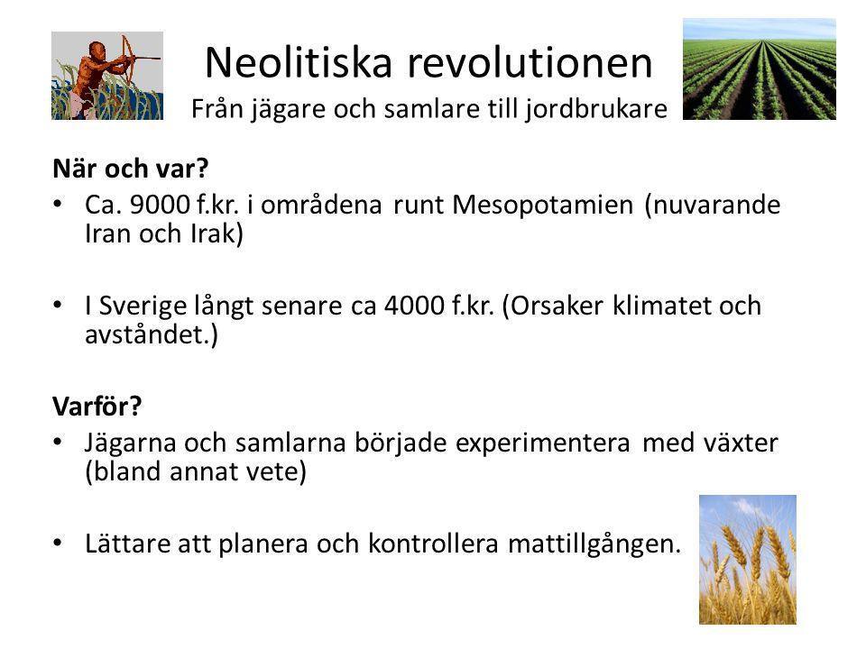 Neolitiska revolutionen Från jägare och samlare till jordbrukare