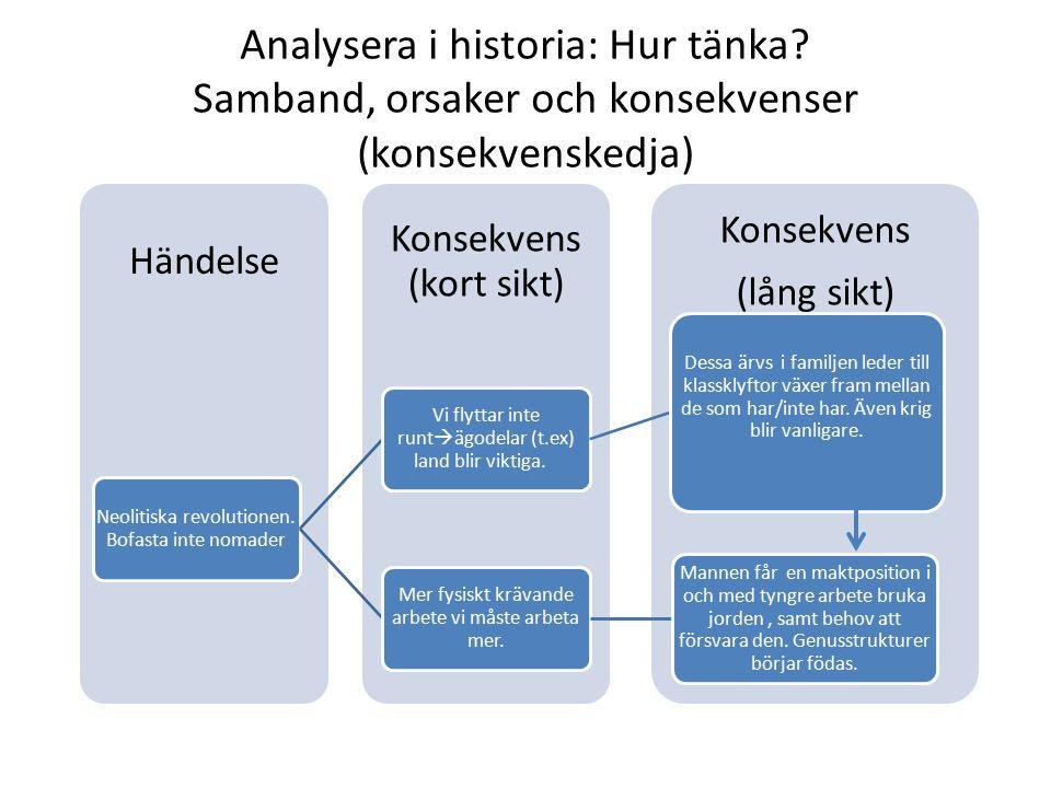 Analysera i historia: Hur tänka