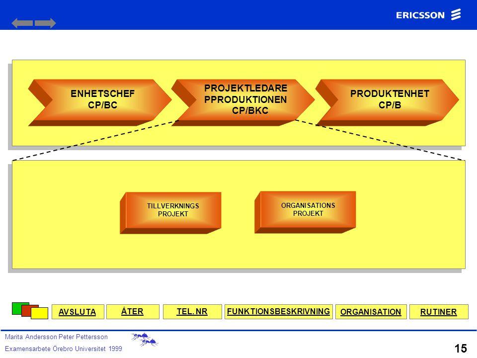 PROJEKTLEDARE PPRODUKTIONEN CP/BKC FUNKTIONSBESKRIVNING
