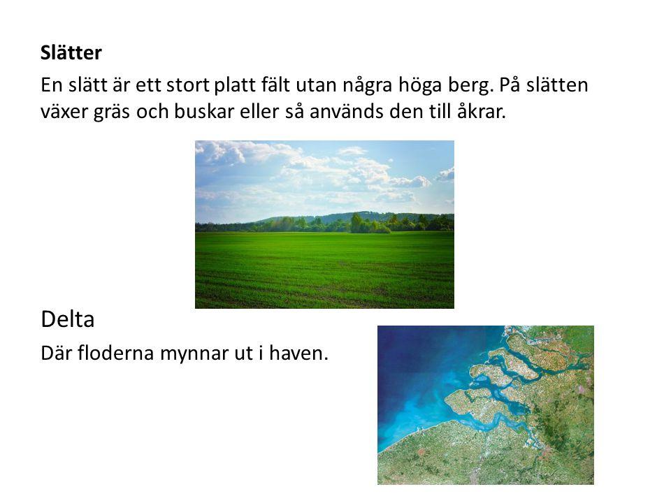 Slätter En slätt är ett stort platt fält utan några höga berg. På slätten växer gräs och buskar eller så används den till åkrar.
