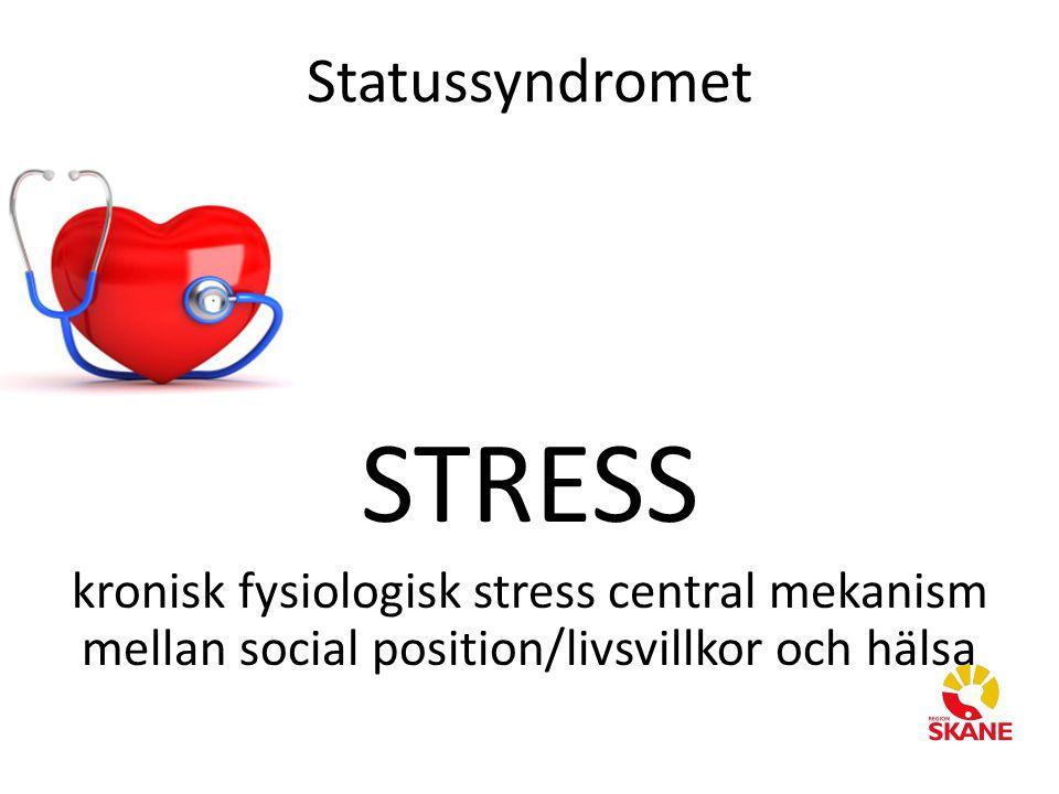 STRESS Statussyndromet