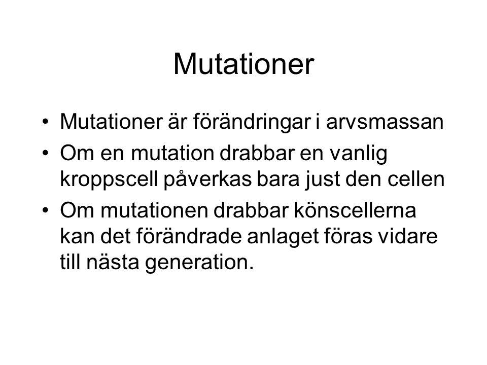 Mutationer Mutationer är förändringar i arvsmassan