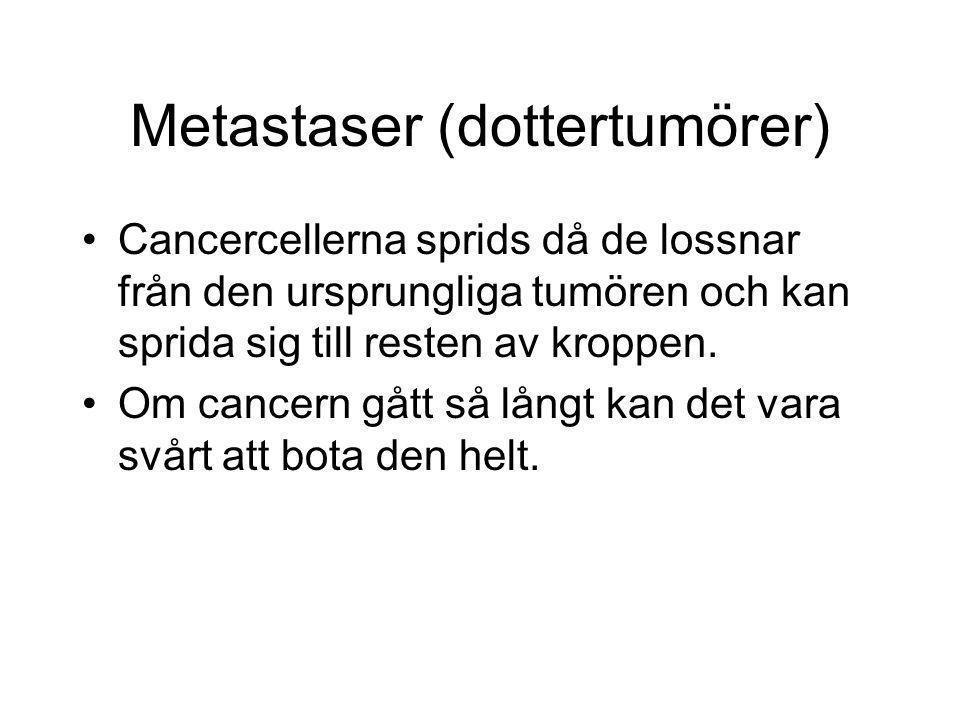 Metastaser (dottertumörer)