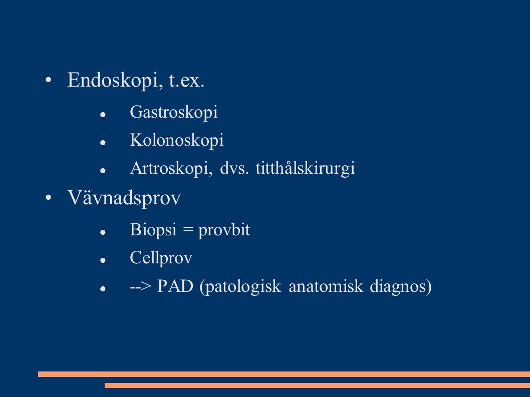 Endoskopi, t.ex. Vävnadsprov Gastroskopi Kolonoskopi