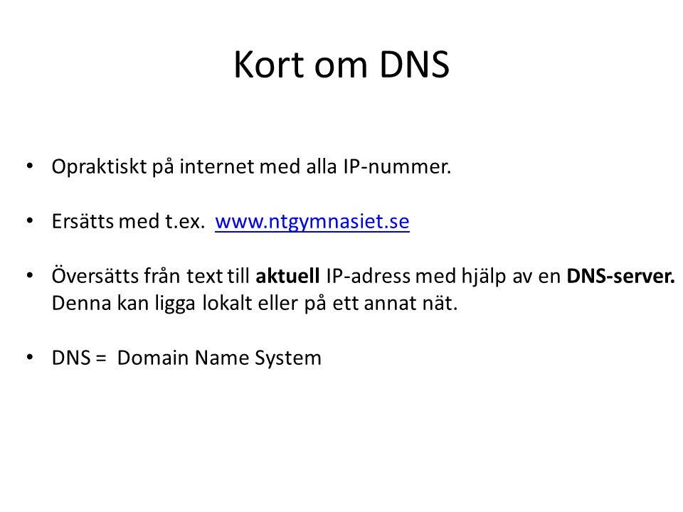 Kort om DNS Opraktiskt på internet med alla IP-nummer.