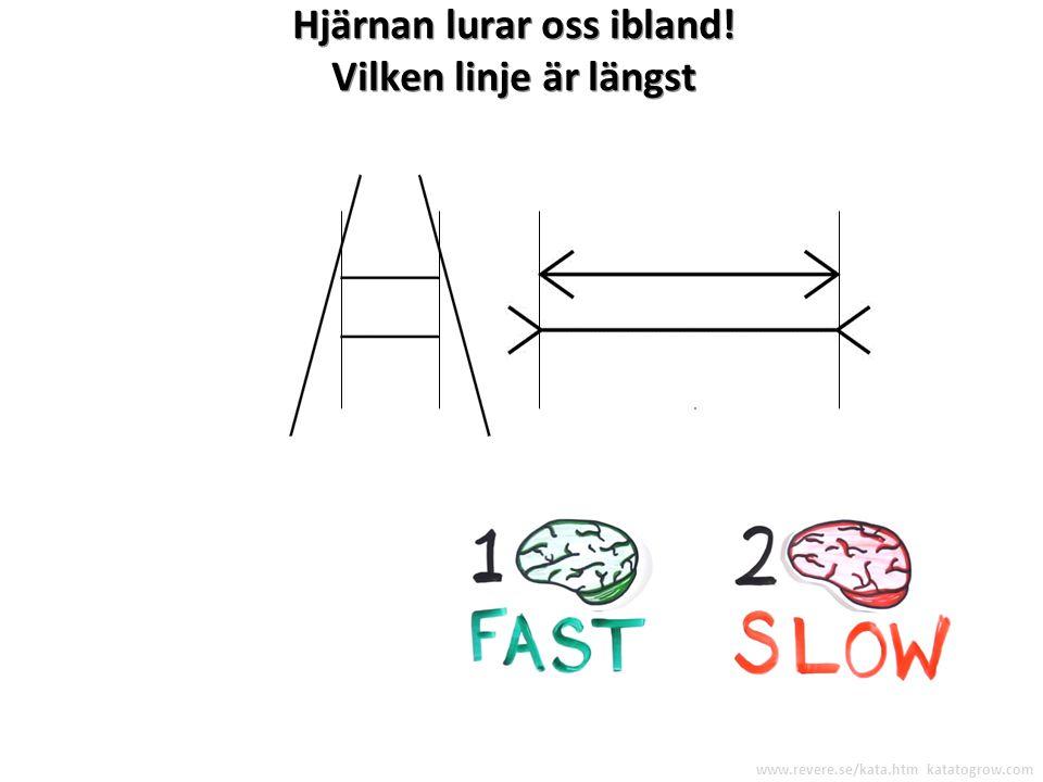 Hjärnan lurar oss ibland! Vilken linje är längst