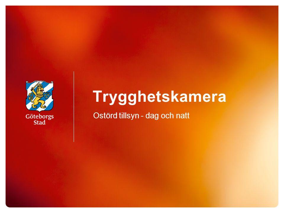 Trygghetskamera Ostörd tillsyn - dag och natt