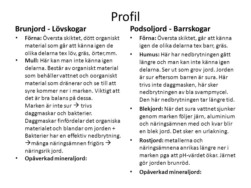 Profil Brunjord - Lövskogar Podsoljord - Barrskogar
