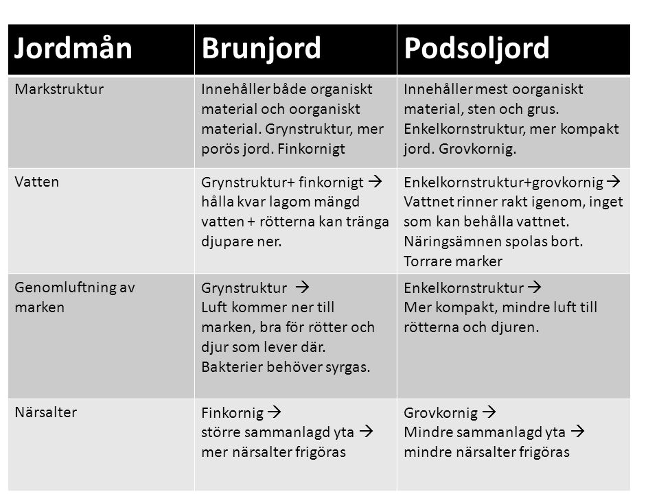 Jordmån Brunjord Podsoljord Markstruktur