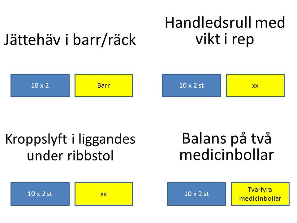 Handledsrull med vikt i rep Jättehäv i barr/räck