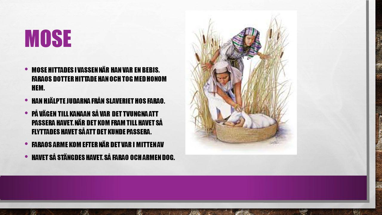 Mose Mose hittades i vassen när han var en bebis. Faraos dotter hittade han och tog med honom hem.