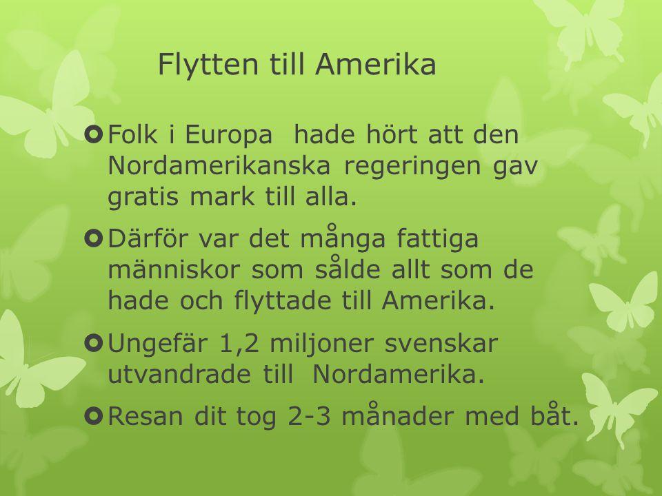 Flytten till Amerika Folk i Europa hade hört att den Nordamerikanska regeringen gav gratis mark till alla.