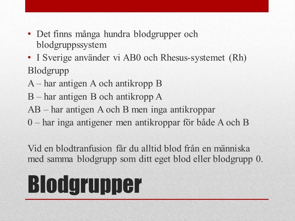 Blodgrupper Det finns många hundra blodgrupper och blodgruppssystem