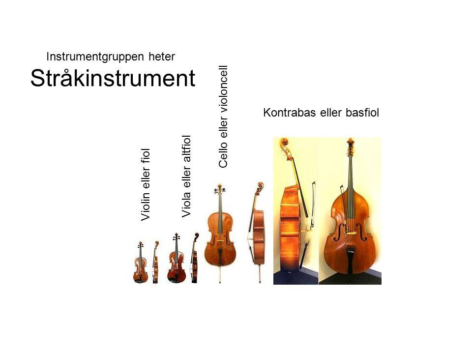 Instrumentgruppen heter