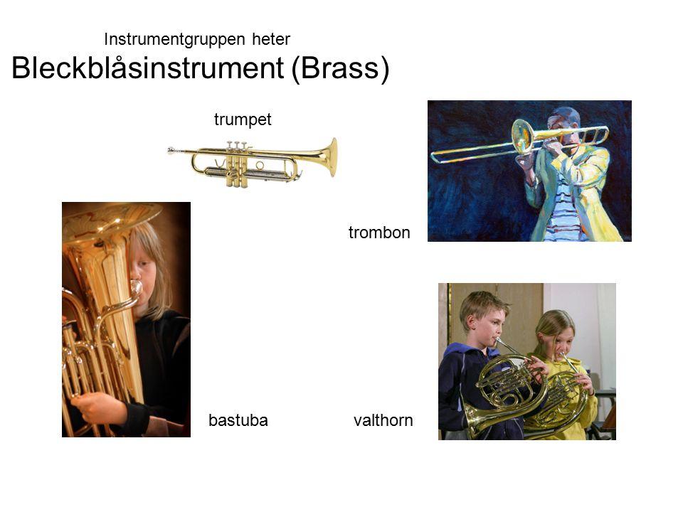 Bleckblåsinstrument (Brass)
