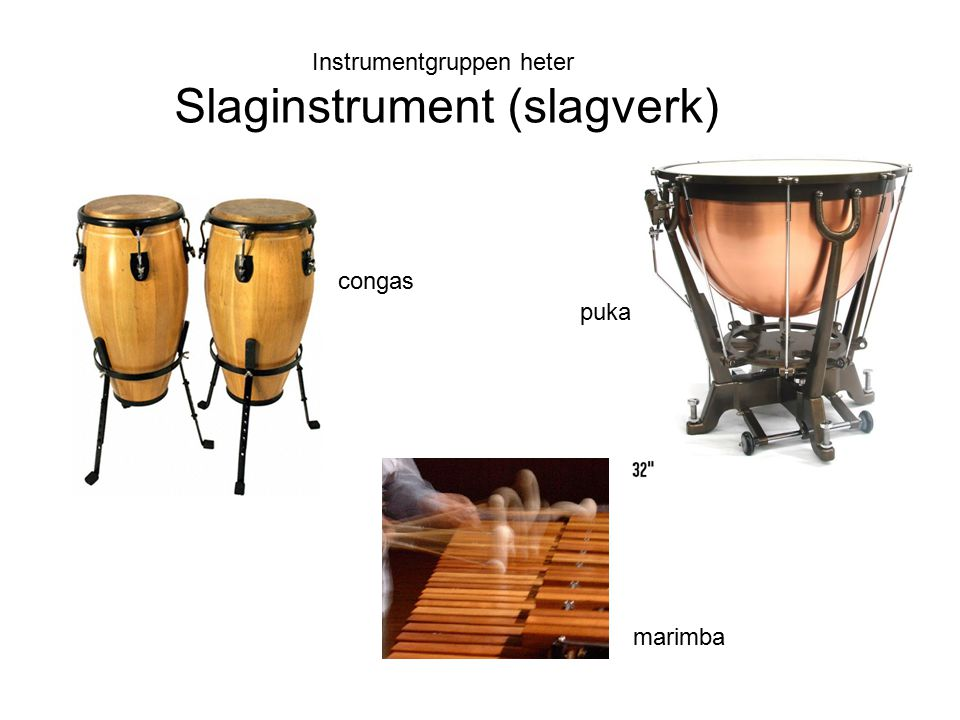 Slaginstrument (slagverk)