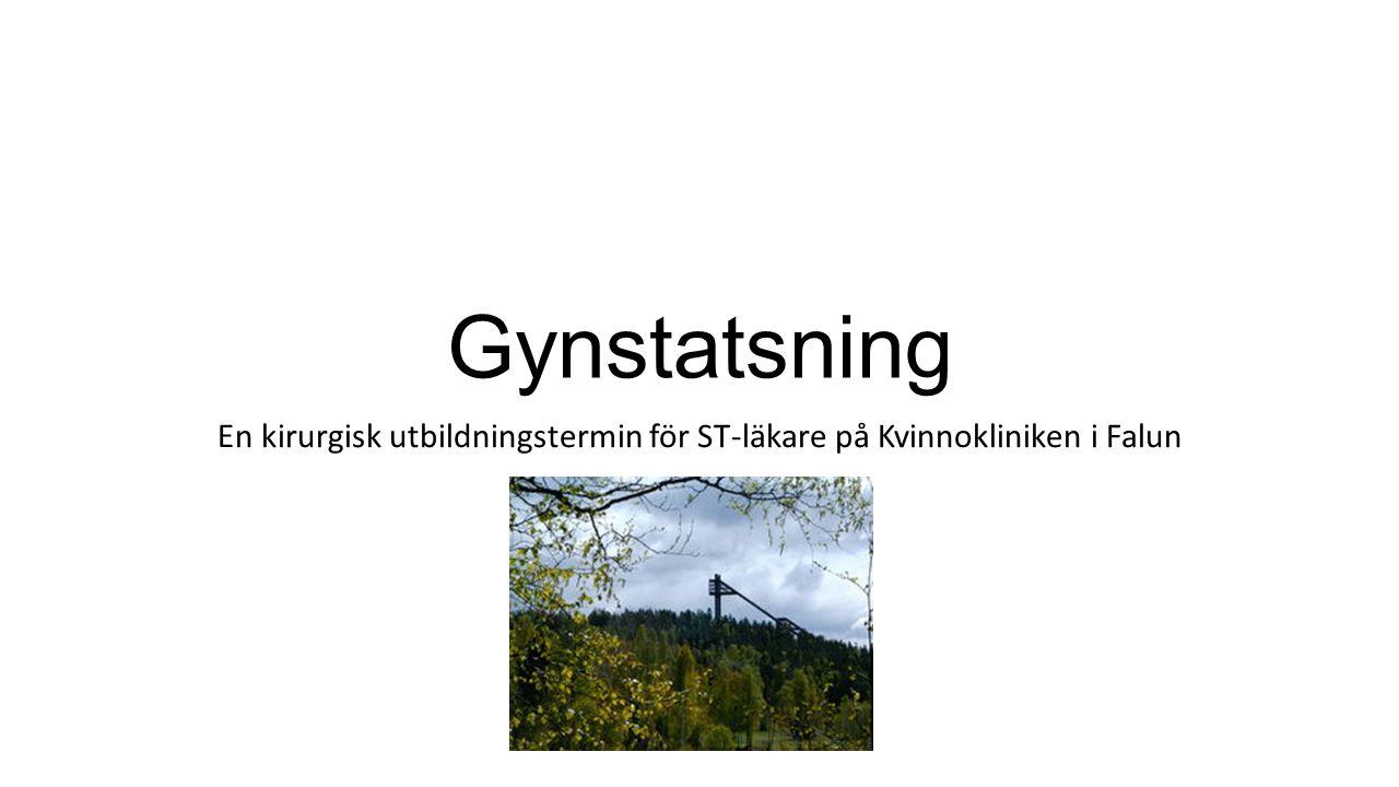 En kirurgisk utbildningstermin för ST-läkare på Kvinnokliniken i Falun