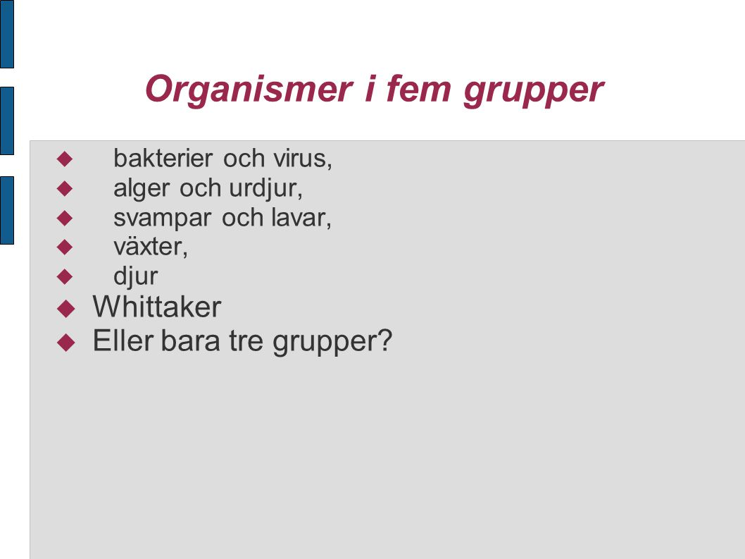 Organismer i fem grupper