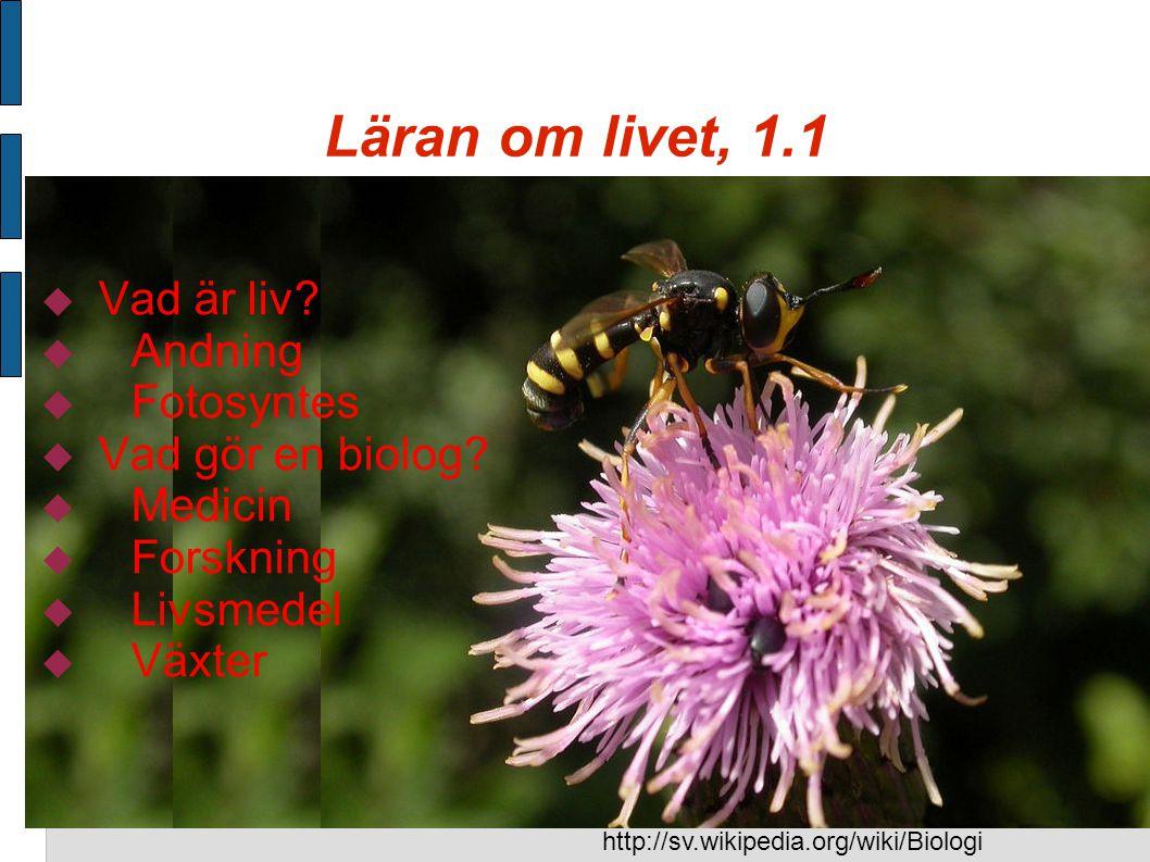 Läran om livet, 1.1 Vad är liv Andning Fotosyntes Vad gör en biolog