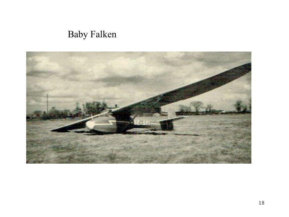 Baby Falken