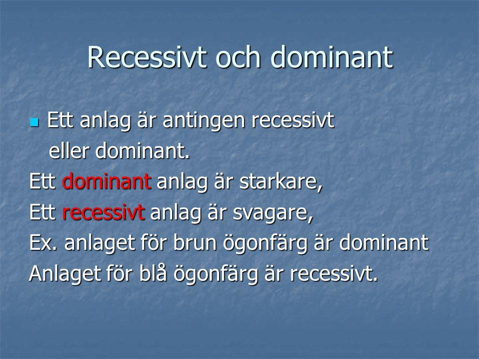 Recessivt och dominant