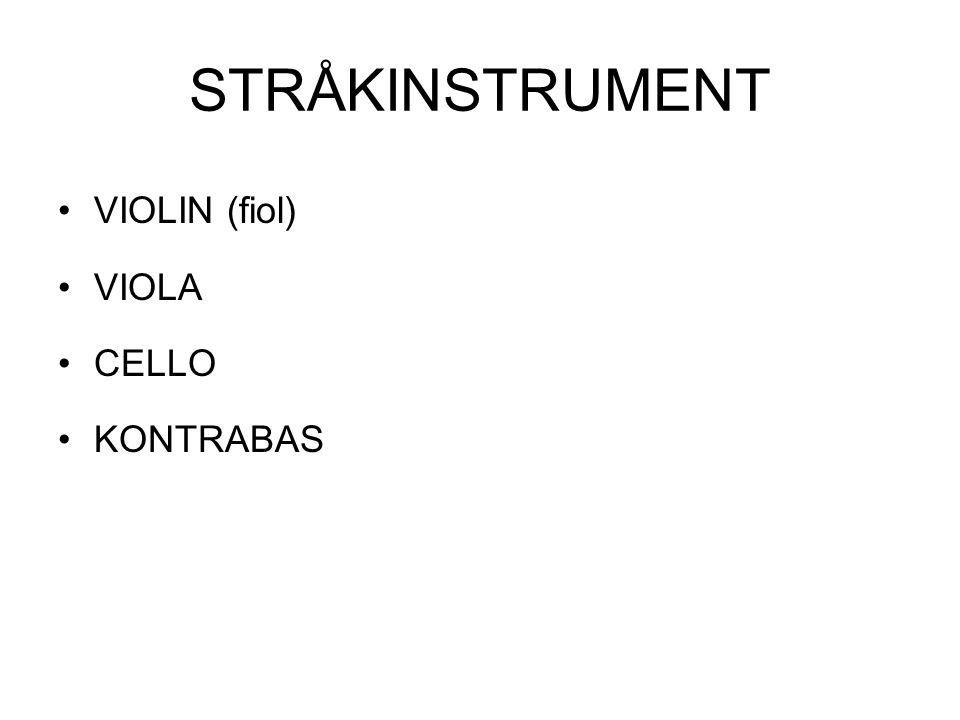 STRÅKINSTRUMENT VIOLIN (fiol) VIOLA CELLO KONTRABAS