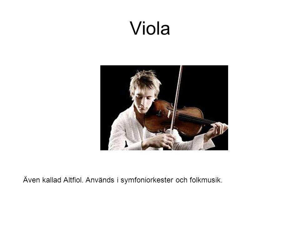 Viola Även kallad Altfiol. Används i symfoniorkester och folkmusik.