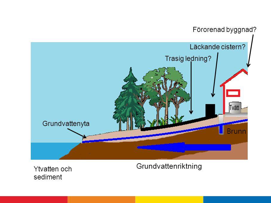 Brunn Grundvattenriktning Förorenad byggnad Läckande cistern