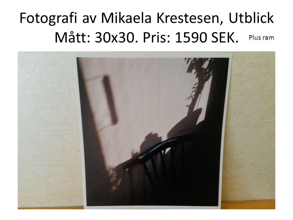 Fotografi av Mikaela Krestesen, Utblick Mått: 30x30. Pris: 1590 SEK.