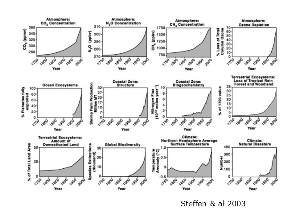 Steffen & al 2003