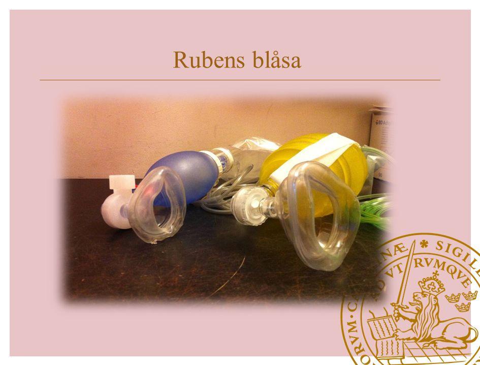 Rubens blåsa