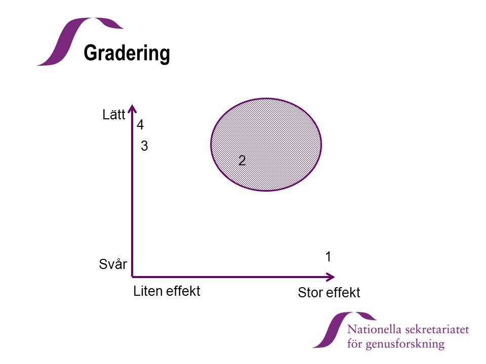 Gradering Lätt 4 3 2 1 Svår Liten effekt Stor effekt Karin