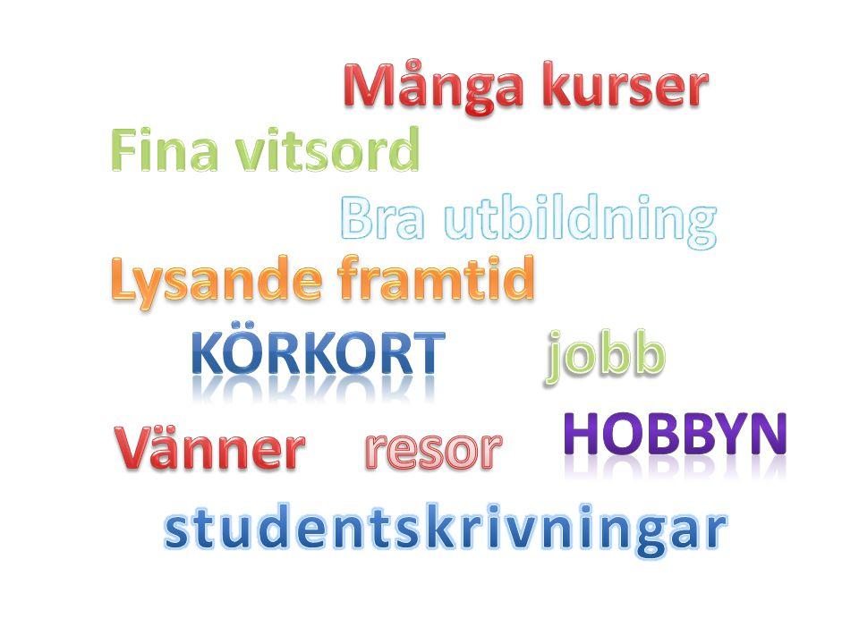 Många kurser Fina vitsord. Bra utbildning. Lysande framtid. Körkort. jobb. Hobbyn. Vänner. resor.