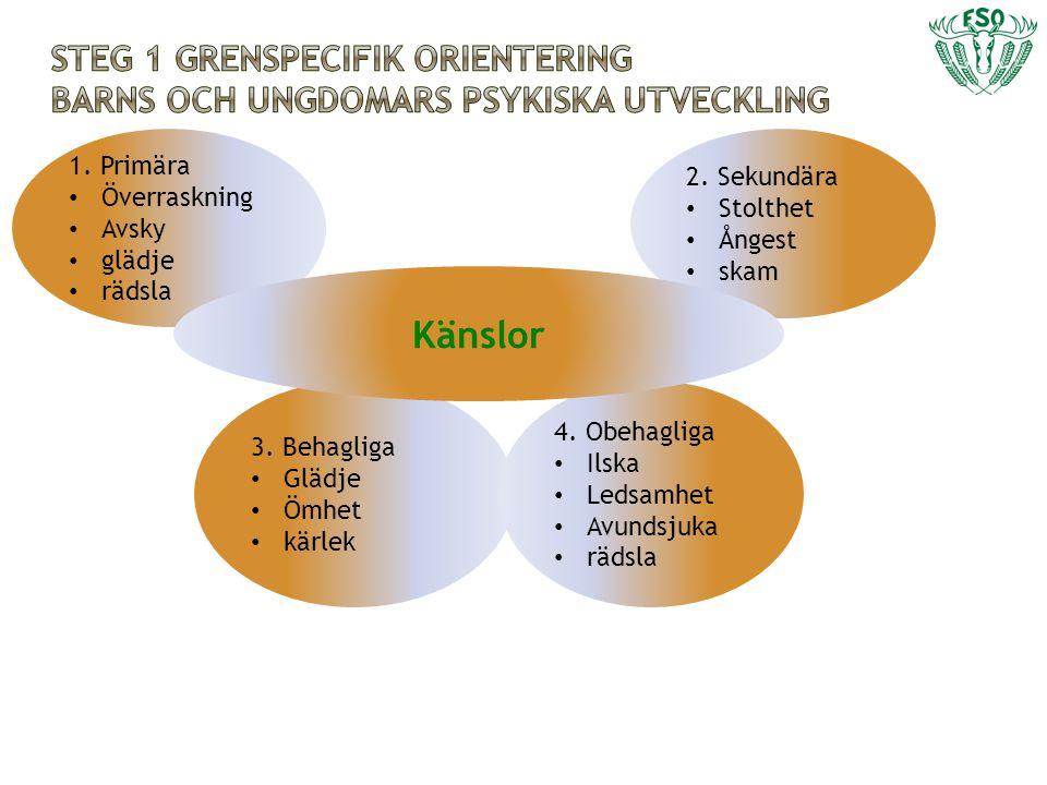 Steg 1 grenspecifik orientering barns och ungdomars psykiska utveckling