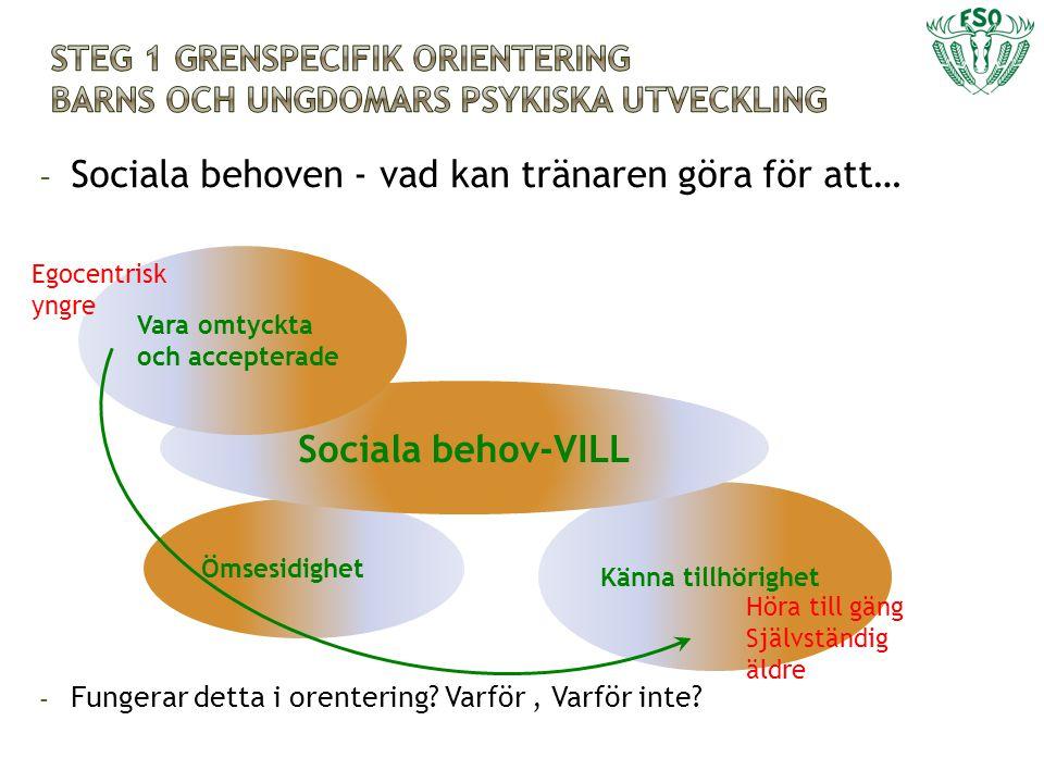 Sociala behoven - vad kan tränaren göra för att…